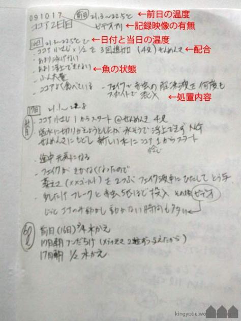 ココア浴をした時の記録です。何をしたか書いておくと後日改善に役に立ちます。