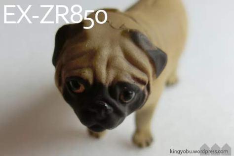 zr850_1
