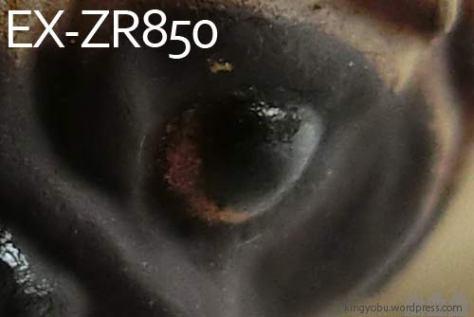 zr850_3